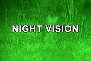 Night Vision